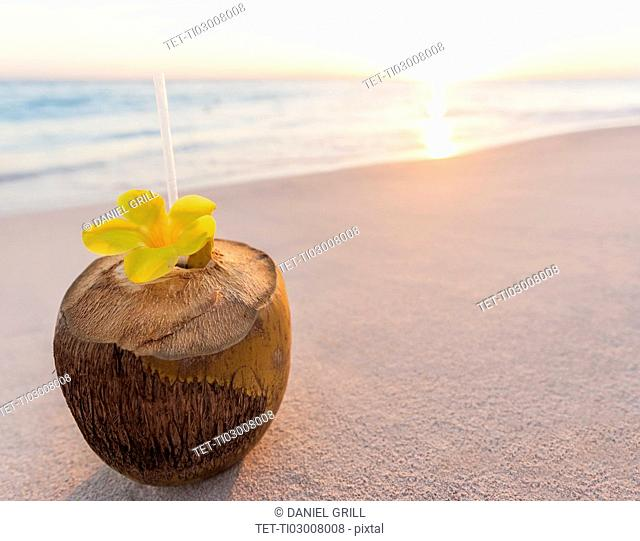 Tropical cocktail in coconut shell on sandy beach