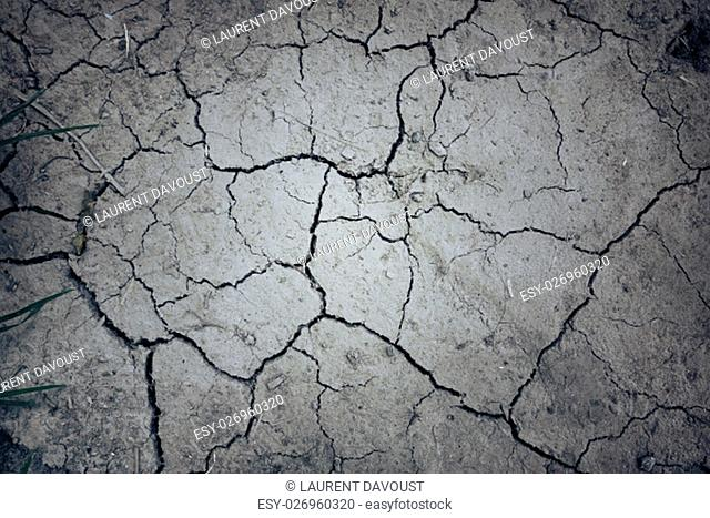 dry mud land background texture. Global Warming concept