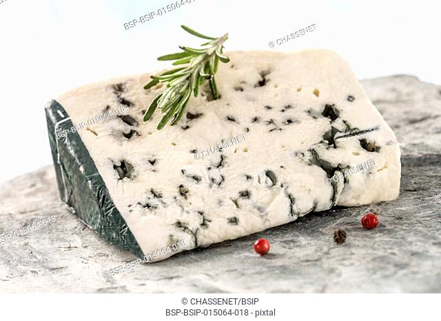 Slice of Roquefort, traditional french cheese