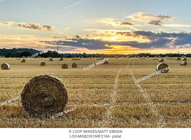 Beautiful landscape image of hay bales in Summer field during colourful sunset