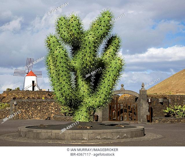 Giant green cactus sculpture, near Jardin de Cactus, by César Manrique, Guatiza, Lanzarote, Canary Islands, Spain