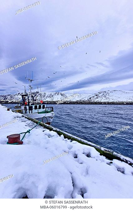Fishing boat at the Nordkapp