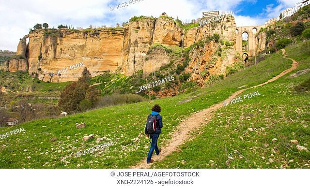 Route to ''El Tajo'' canyon or gorge, Ronda, White Towns, Malaga province, Andalusia, Spain, Europe