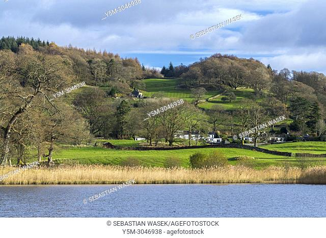 Esthwaite Water, Lake District National Park, Cumbria, England, United KIngdom, Europe