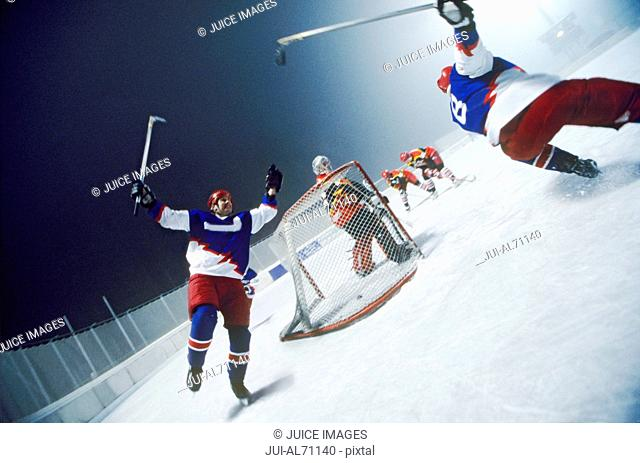 Tilted view of an ice hockey team celebrating on the ice