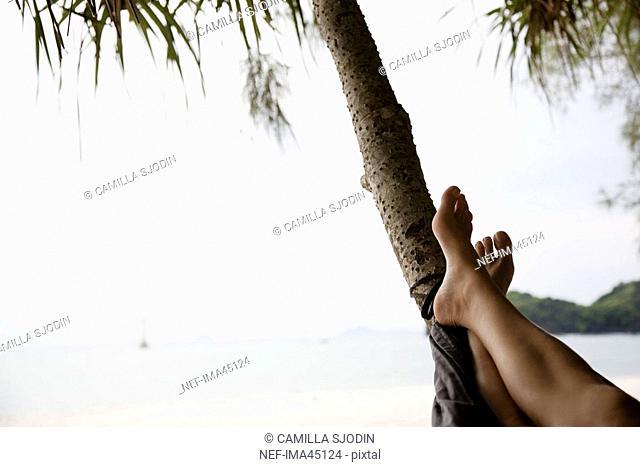 The legs of a woman in a hammock on the beach Thailand