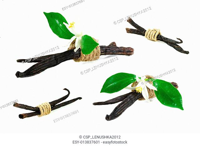 Vanilla sticks and flowers