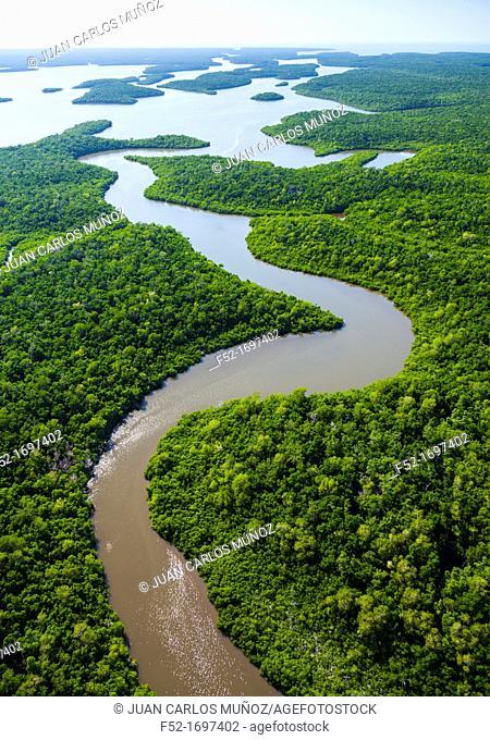 Aerial view, Everglades Natuional Park, Florida, USA