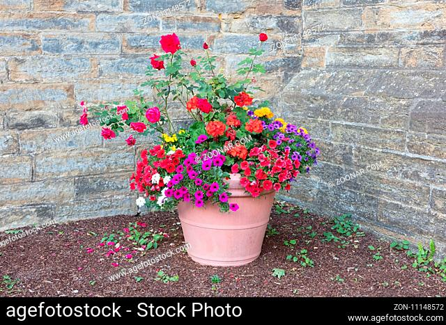 Flowers in a big vase, castle wall as background