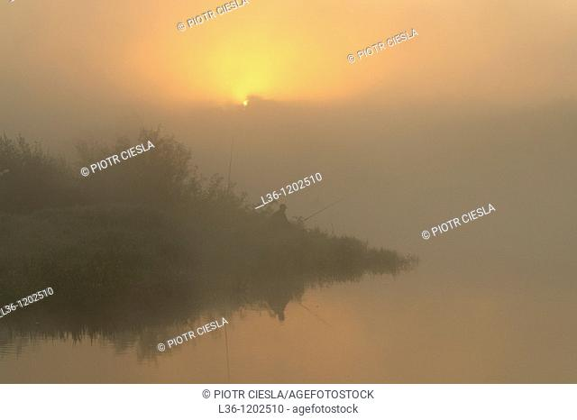 A misty morning on the river Bug. Podlasie region. Eastern Poland