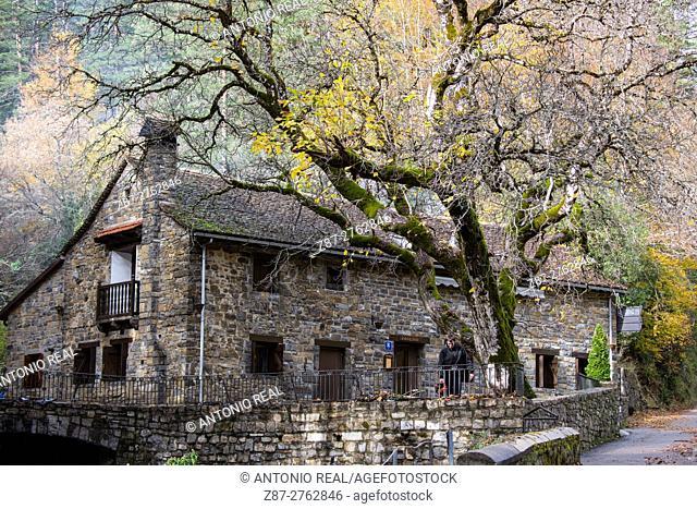 Recreation area, Valle de Ansó, Valles Occidentales Natural Park, Pyrenees Mountains, Huesca province, Aragon, Spain