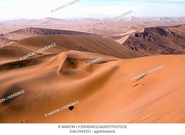 Dune landscape of Namib desert, Soussuvlei, Namib-Naukluft National Park, Namibia