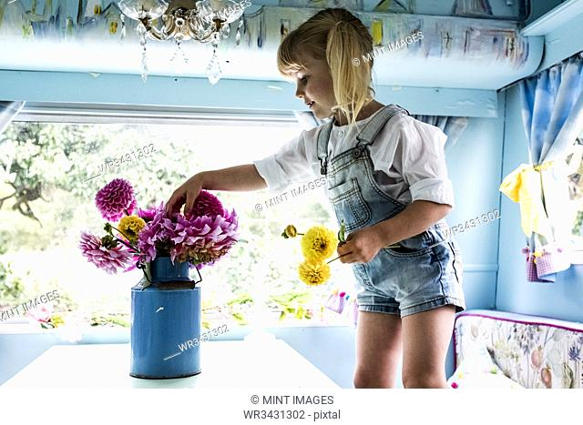 Blond girl standing at a table inside a blue caravan, putting pink Dahlias into a blue vase
