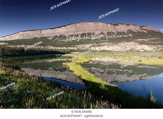 The Palisades reflected in a wetlands in Japser National Park, Alberta, Canada