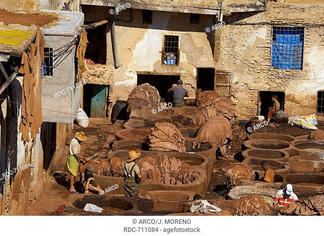 Fez, Fes, Traditional Tanneries with dying vats, The Chouwara, Chouara, Tannery, Old Town, Medina, UNESCO World Heritage Site, Fez el Bali, Morocco, Maghreb