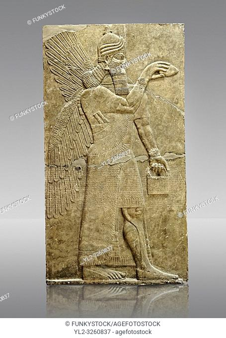 Chaldean Assyrian relief sculpture slab from the northwest palace of King Ashurnasirpal II of a Genie standing. 881-859 B