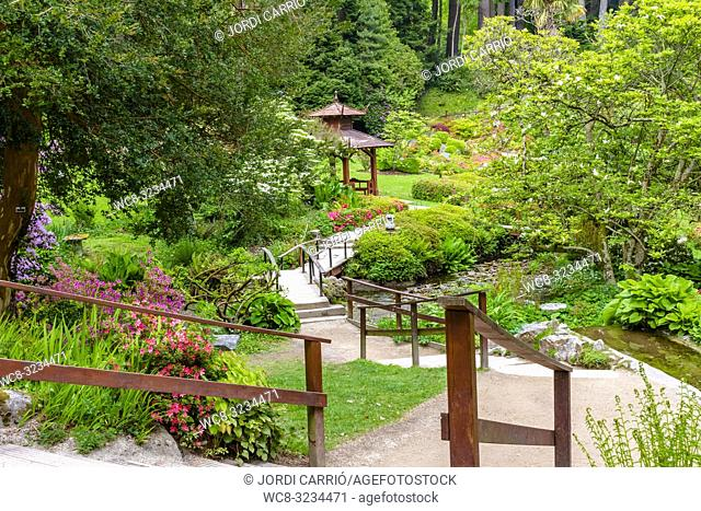 ENNISKERRY, CO. WICKLOW, IRELAND: View of the Japanese garden in the Powerscourt gardens