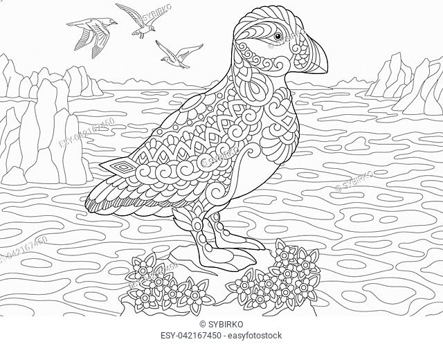 Coloring Page. Adult Coloring Book. Puffin, a hole-nesting auk ... | 497x640