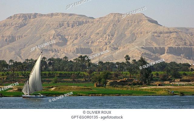 FELUCCA BOAT ON THE NILE, LUXOR, HIGH EGYPT, EGYPT, AFRICA