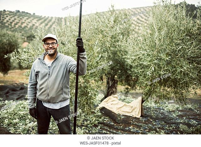Spain, portrait of smiling worker in olive grove