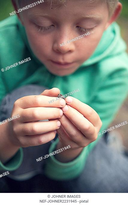 Boy with a small frog