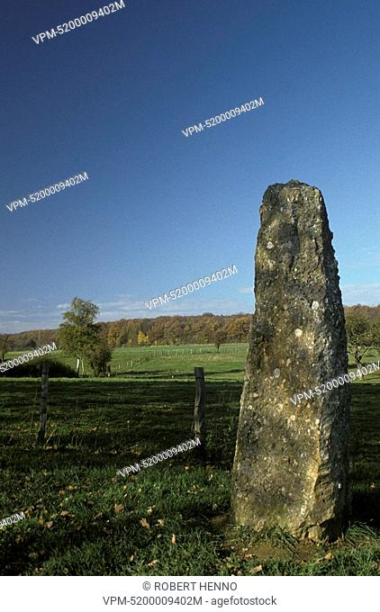 MENHIR - STANDING STONE3000-2800 B.C.MEGALITHIC SITEWERIS - DURBUY ARDENNE - BELGIUM