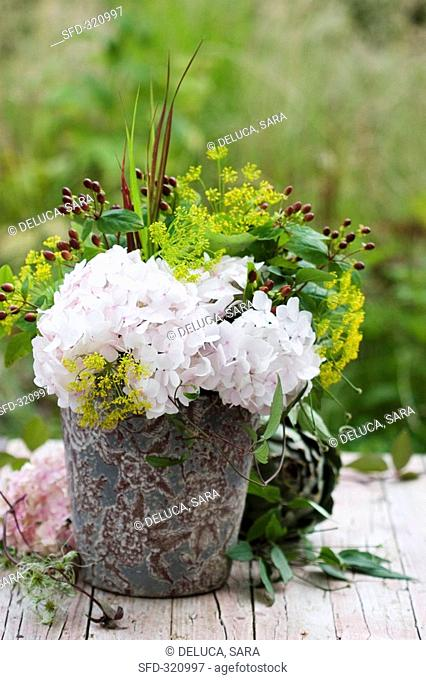 Hydrangeas, dill and St  John's wort in vase