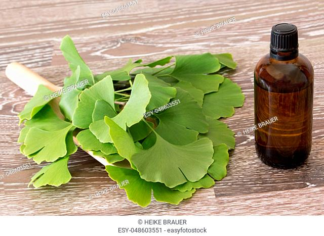 fresh ginkgo leaves on a scoop and brown bottle
