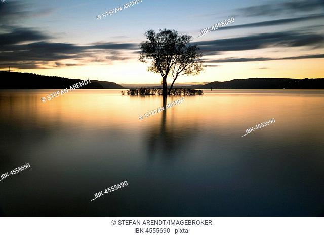 Evening atmosphere with sunset with clouds at Lake Constance, at the Klausenhorn, Dingelsdorf, Baden-Württemberg, Germany