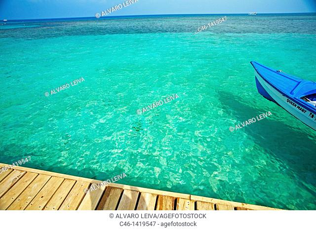 West Bay beach, Roatan  Bay Islands  Caribbean  Honduras