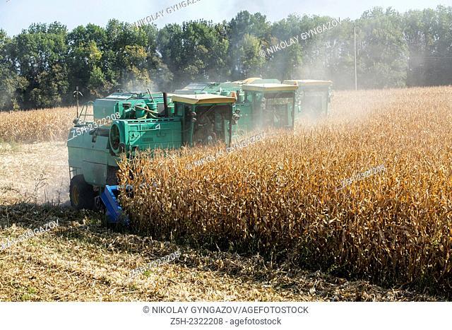 The Russian Federation, Belgorod region, harvesting