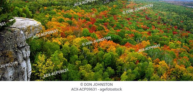 Autumn colours in hardwood forest from Cup and Saucer trail viewpoint on Manitoulin Island, M'Chigeeng First Nations, Ontario, Canada