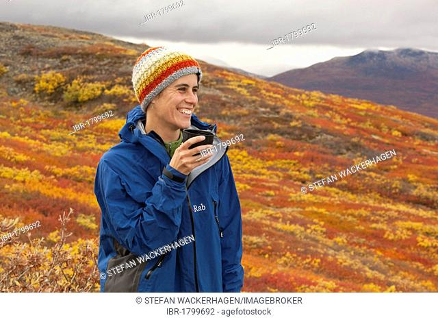 Young woman, hiker, smiling, holding a cup, sub-alpine tundra, Indian summer, leaves in fall colours, autumn, near Fish Lake, Yukon Territory, Canada