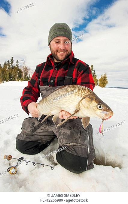 Ice fisherman holding a large whitefish; Ontario, Canada
