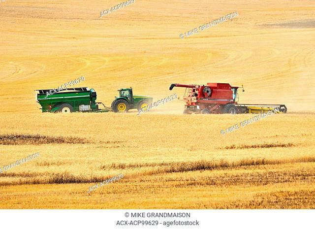 Combine harvesting durum wheat with grain cart Carmichael Saskatchewan Canada