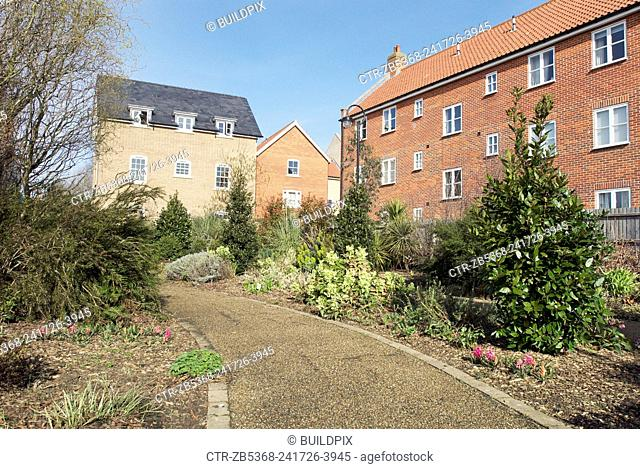 Landscaped housing development, Ely, Cambridgeshire, UK