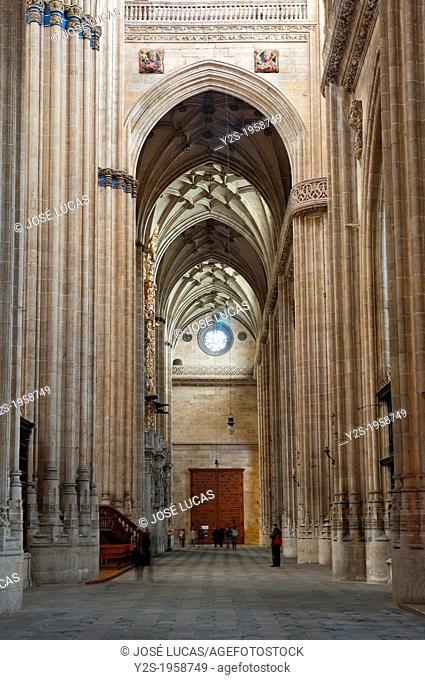 New Cathedral - interior, 16th century, Salamanca, Region of Castilla y Leon, Spain, Europe