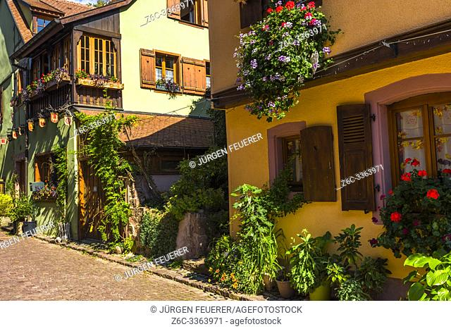 scenic corner in the old town of Kaysersberg, Alsace, France, colorful houses