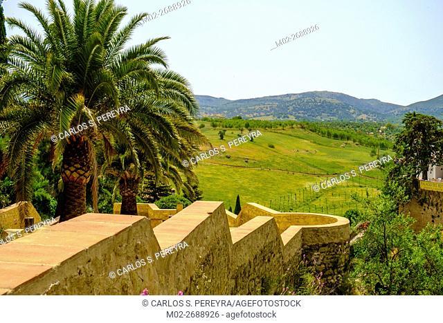 Panoramic of Ronda, Andalusia, Spain