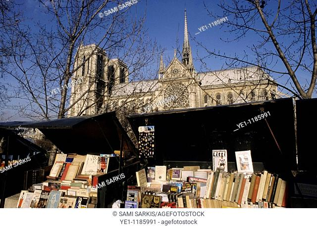 Books on display on a book stall in front of Notre Dame de Paris, Paris, France