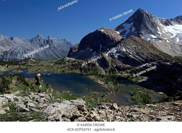 Hiker above Limestone Lakes, Mount Marconi, Mount Minton and Russell Peak, Height of the Rockies Provincial Park, British Columbia, Canada