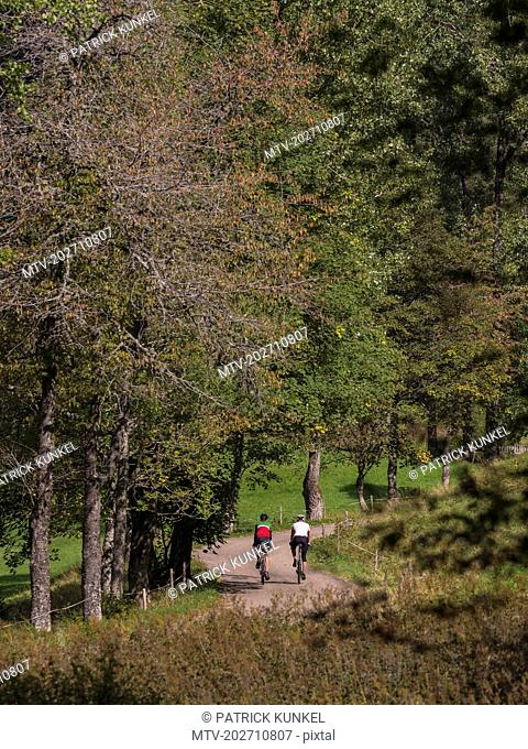 Two men riding racing bicycle on cycling tour in Middle Black Forest, Baden-Württemberg, Germany