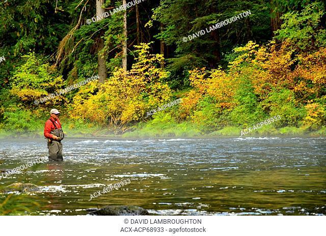 Fly fisherman in waders, Umqua River Oregon Steelhead Fishing