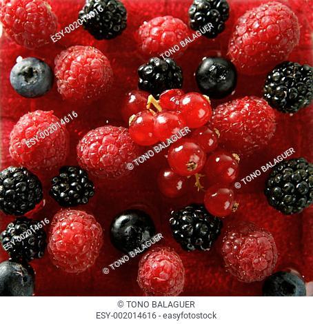 Berries mix dessert