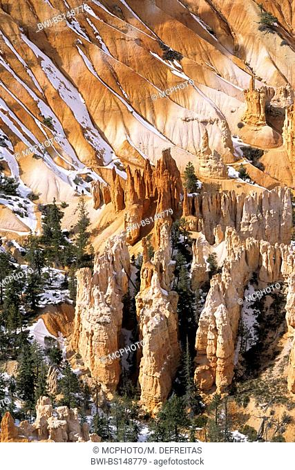 Hoodoos Amphitheater at Bryce Canyon National Park, USA, Bryce Canyon National Park