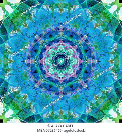 Photographic flower mandala
