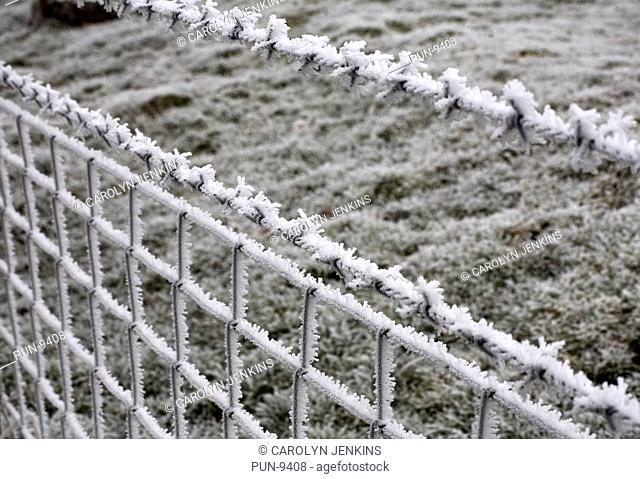 Wire fence covered with hoar frost at Dorset in January