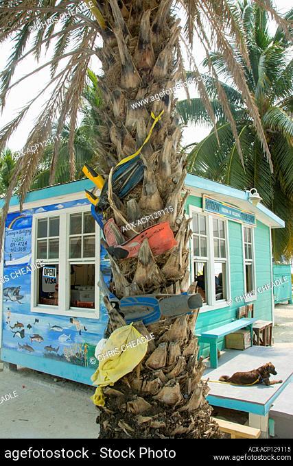 Adventure shop, Caye Caulker, Belize