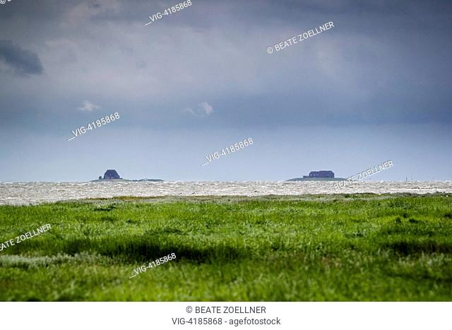 Holm landscape - Hamburger Hallig, Schleswig-Holstein, Germany, 23/06/2013