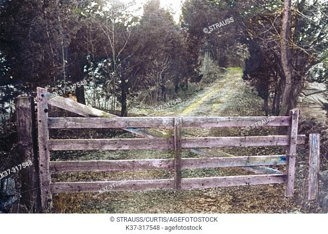 Wooden farm gate and path